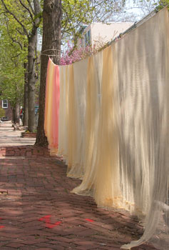 Dyed fabric line-drying on street.